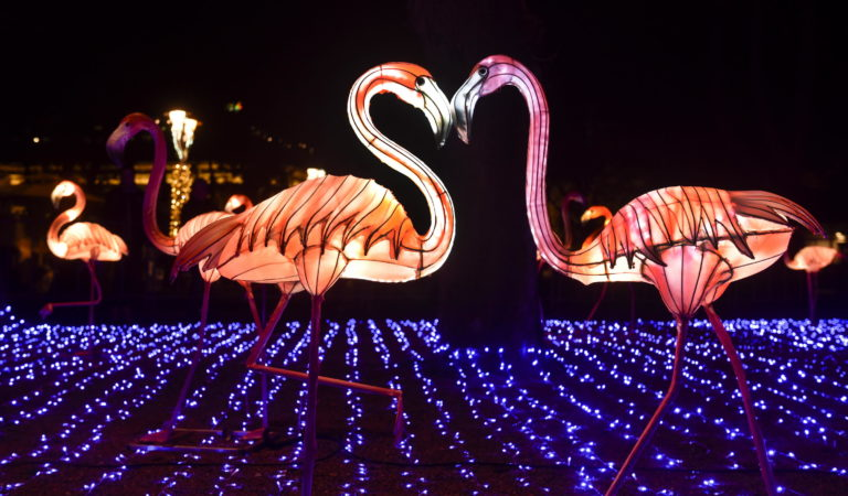 Zbog velikog interesovanja, produžava se Kineski festival svetla